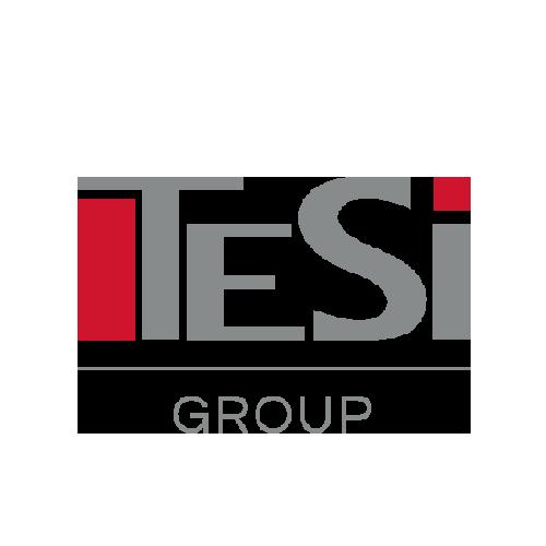 Logo Tesi Group